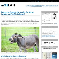 Evergreen Content: So generiert Dein Content dauerhaft Traffic!