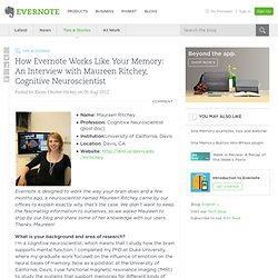 How Evernote Works Like Your Memory: An Interview with Maureen Ritchey, Cognitive Neuroscientist