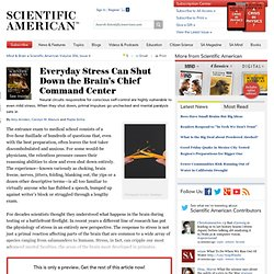 Everyday Stress Can Shut Down the Brain's Chief Command Center