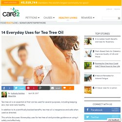14 Everyday Uses For Tea Tree Oil