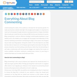 Everything About Blog Commenting