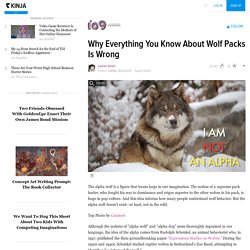 Why Everything You Know About Wolf Packs Is Wrong