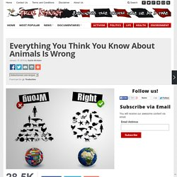 Everything You Think You Know About Animals Is Wrong