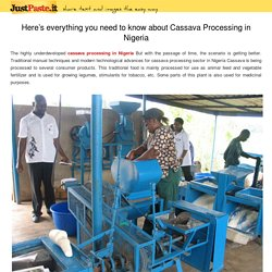 Here's everything you need to know about Cassava Processing in Nigeria