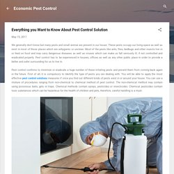 Everything you Want to Know About Pest Control Solution