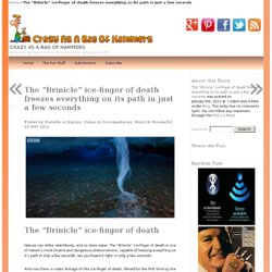 """The """"Brinicle"""" ice-finger of death freezes everything on its path in just a few seconds - Crazy as a Bag of Hammers - #Humour, #Jokes and #fun stuff. - BBC, Frozen Planet, Videos Documentaries, Weird Wonderful"""