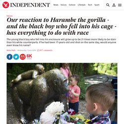 Our reaction to Harambe the gorilla - and the black boy who fell into his cag...