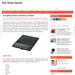 Everything About Induction Cookers ~ City Street Spotter