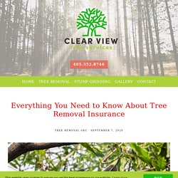 Everything You Need to Know About Tree Removal Insurance