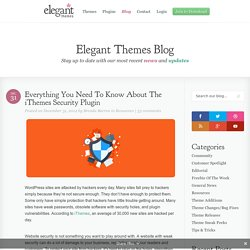 Everything You Need To Know About The iThemes Security Plugin