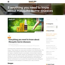 Everything you need to know about Mosquito-borne diseases - Use Smart SAN