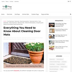 Everything You Need to Know About Cleaning Door Mats