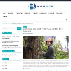 Everything You Need To Know About The Tree Surgeons