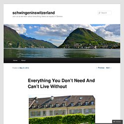 Everything You Don't Need And Can't Live Without | schwingeninswitzerland