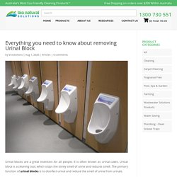 Everything you need to know about removing Urinal Block - Bio Natural Solutions