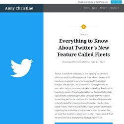 Everything to Know About Twitter's New Feature Called Fleets – Anny Christine