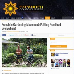 Freestyle Gardening Movement: Putting Free Food Everywhere! - Expanded Consciousness