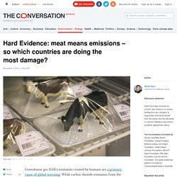 Hard Evidence: meat means emissions – so which countries are doing the most damage?