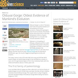 Olduvai Gorge: Oldest Evidence of Mankind's Evolution