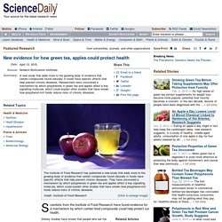 New evidence for how green tea, apples could protect health