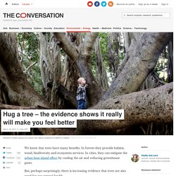 Hug a tree – the evidence shows it really will make you feel better