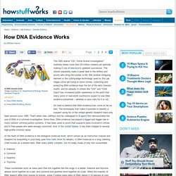 How DNA Evidence Works - HowStuffWorks
