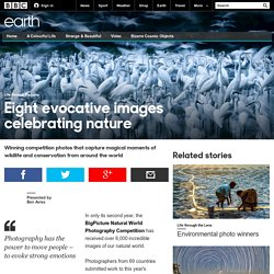 Earth - Eight evocative images celebrating nature