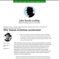 Why human evolution accelerated