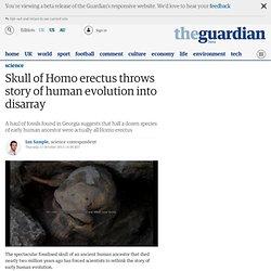 Skull of Homo erectus throws story of human evolution into disarray