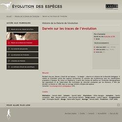 Évolution des espèces»Darwin sur les traces de l'évolution