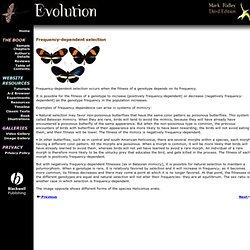 Evolution - A-Z - Frequency-dependent selection