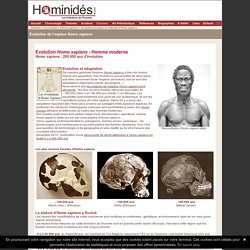 Évolution de l'Homme (Anthropologie de base)