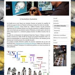 L'évolution humaine - Antoine Balzeau, paléoanthropologue
