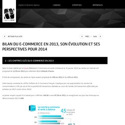 Bilan e-commerce en 2013. Evolution et perspectives 2014.