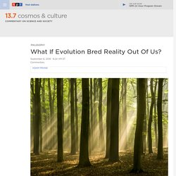 What If Evolution Bred Reality Out Of Us? : 13.7: Cosmos And Culture