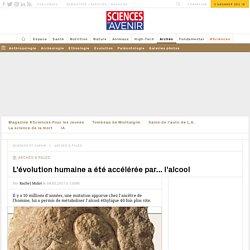 L'évolution humaine a été accélérée par... l'alcool - Sciencesetavenir.fr