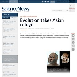 Evolution Takes Asian Refuge