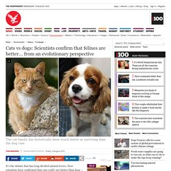 Cats vs dogs: Scientists confirm that felines are better... from an evolutionary perspective - Nature - Environment - The Independent