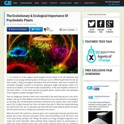 The Evolutionary & Ecological Importance Of Psychedelic Plants