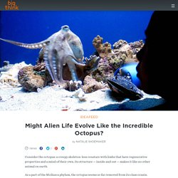Might Alien Life Evolve Like the Incredible Octopus?