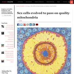 Sex cells evolved to pass on quality mitochondria