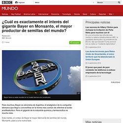 ¿Cuál es exactamente el interés del gigante Bayer en Monsanto, el mayor productor de semillas del mundo? - BBC Mundo