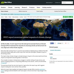 IPCC report examines global impacts of climate change