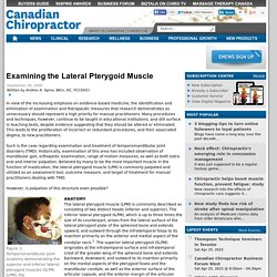 Examining the Lateral Pterygoid Muscle