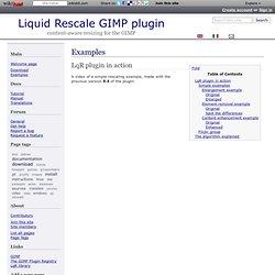 Liquid Rescale GIMP plugin: Examples
