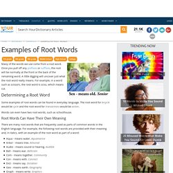Examples of Root Words