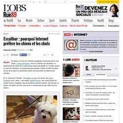 Excalibur: pourquoi Internet préfère les chiens et les chats - Le nouvel Observateur
