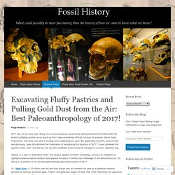Excavating Fluffy Pastries and Pulling Gold Dust from the Air: Best Paleoanthropology of 2017!