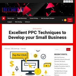 Excellent PPC Techniques to Develop your Small Business - Techeest