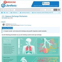 2.3: Gaseous Exchange Mechanism - Medicine LibreTexts